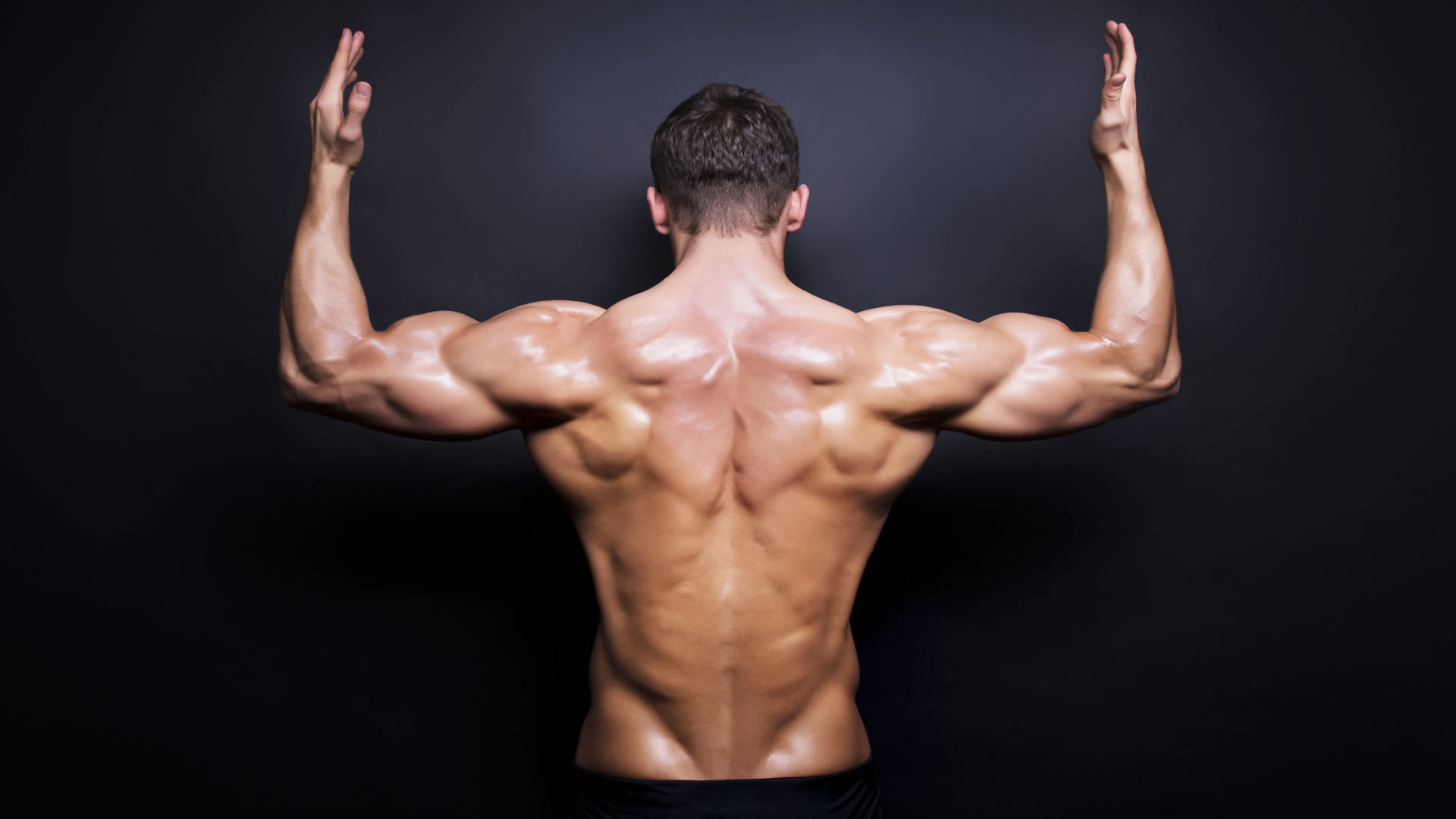 Musculos archivos - Fitness Guia - FITNESS-GUIA.ES