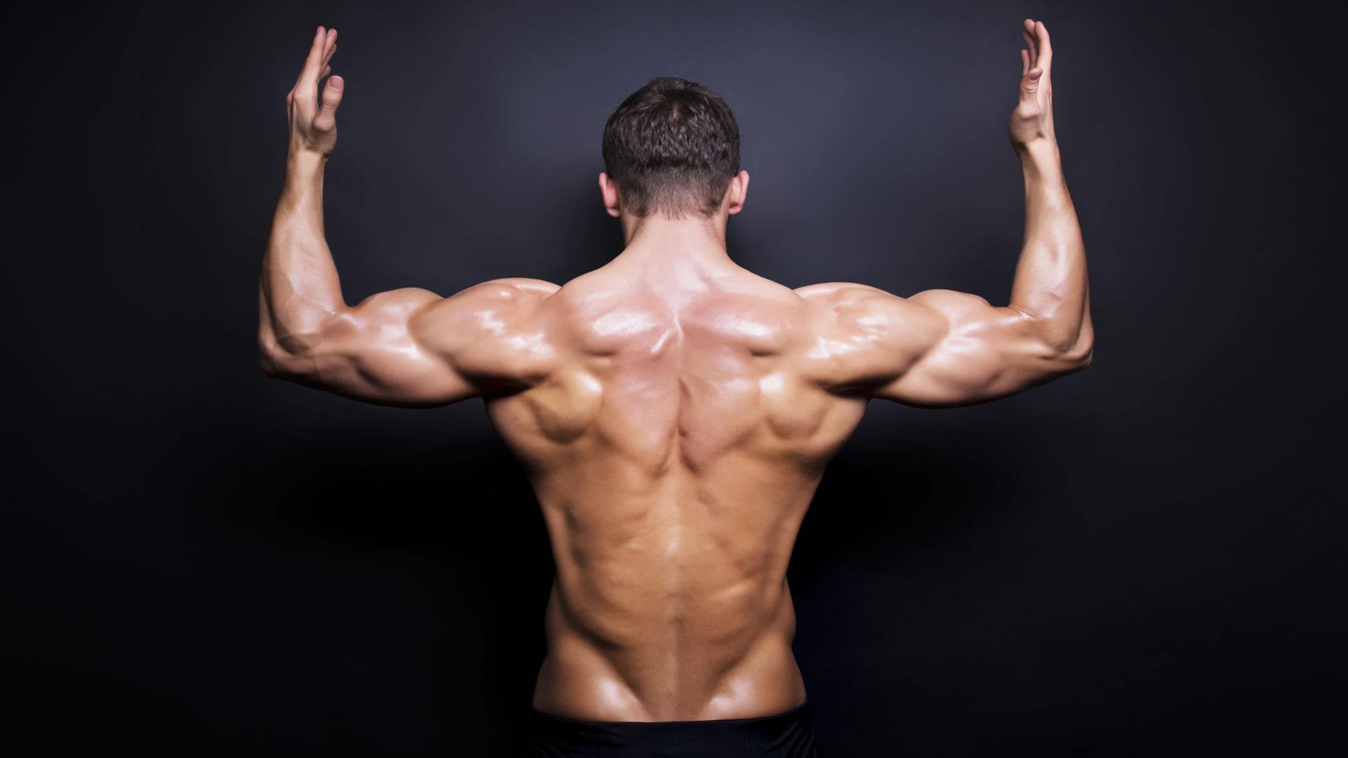 músculos trapecio