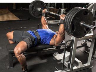 press banca musculos implicados